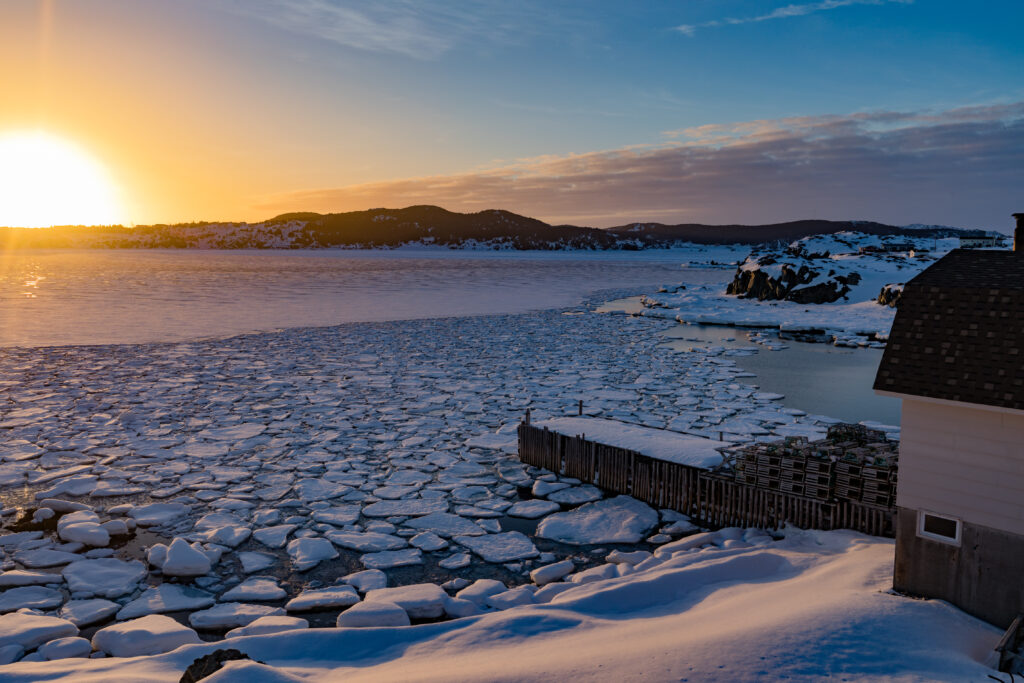 Outport home at shore of frozen Atlantic Ocean bay filled with ice floes with setting winter sun near town of twillingate, Newfoundland, NL, Canada